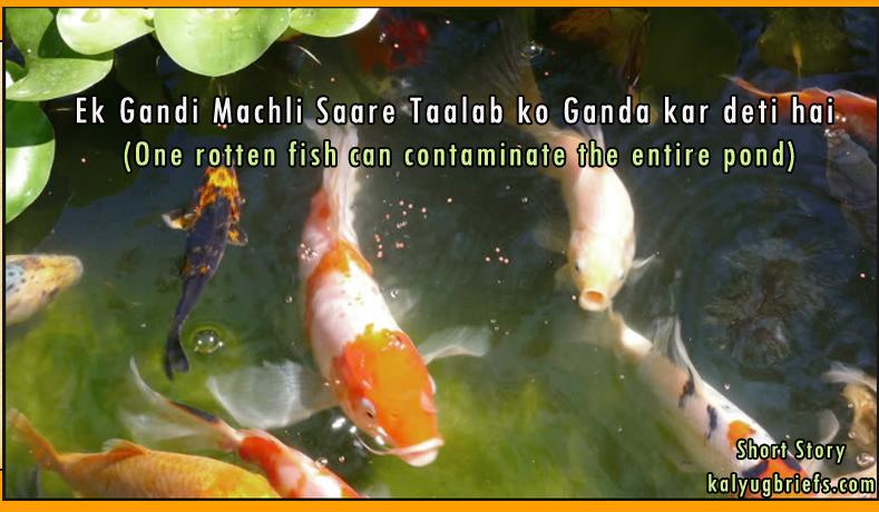 Ek Gandi Machli Saare Taalab ko Ganda kar deti hai